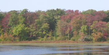 Early fall color on Stump Pond, Smithtown, NY September 25, 2004