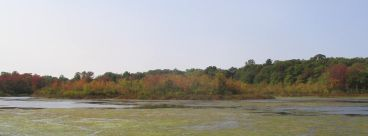 Stump Pond, Smithtown, NY September 25, 2004