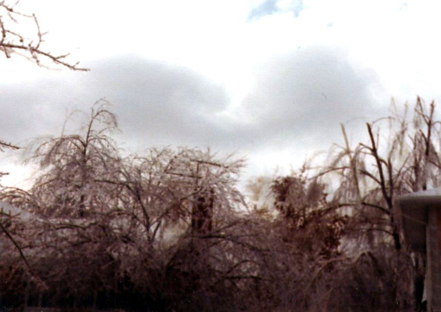 Weather Images The Long Island Ice Storm Of January 13