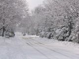 Drifted snow in Smithtown, March 8, 2005