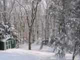Fresh snowcover in Smithtown, NY on the morning of March 9, 2005
